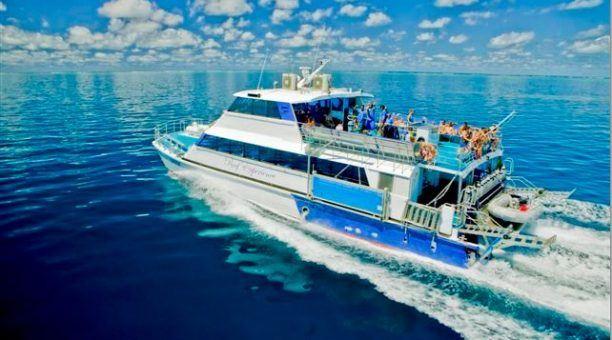 Reef Experience catamaran
